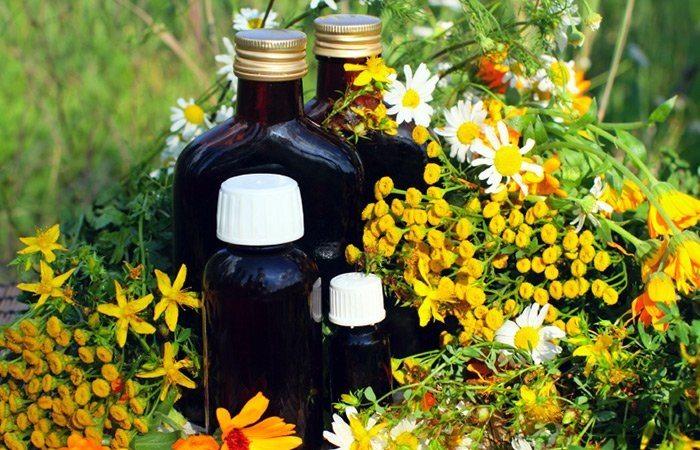 Травы для лечения аденомы