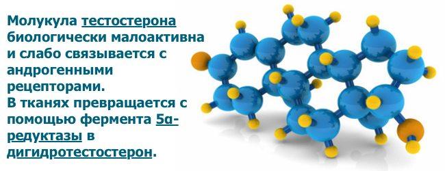 Ингибиторы 5-альфа редуктазы