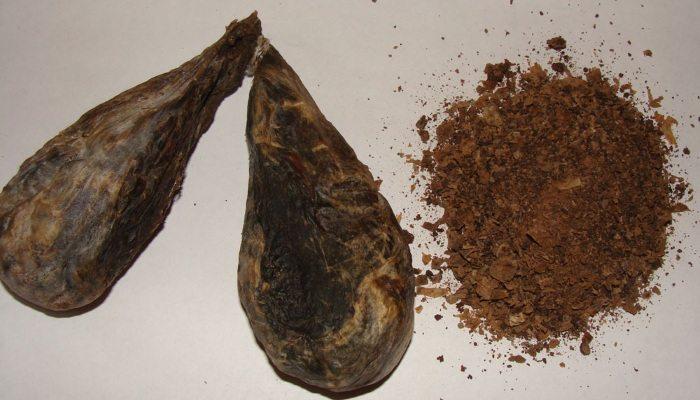 Стружка из бобровой струи