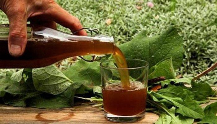 чай из лопуха для похудения