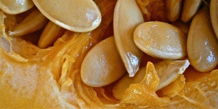 Семена тыквы от простатита
