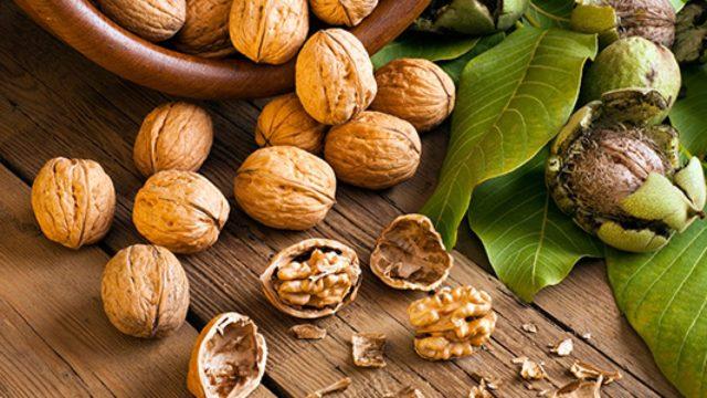 Орехи являются сокровищницей микроэлементов и витаминов