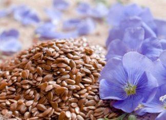 Семена льна при простатите