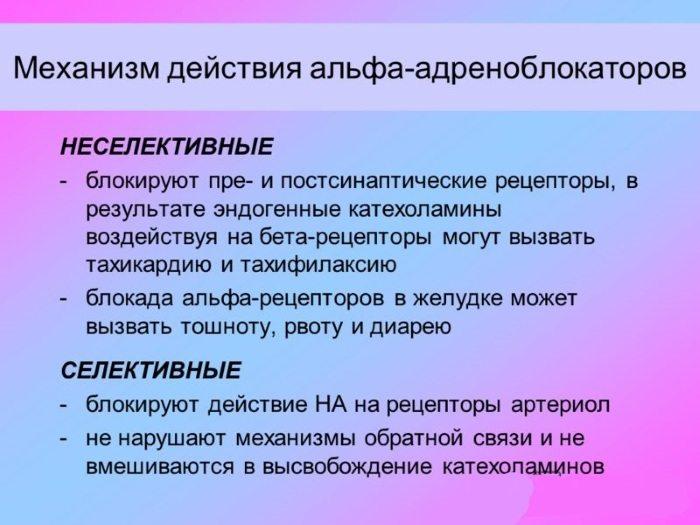 Альфа-адреноблокаторы механизм действия