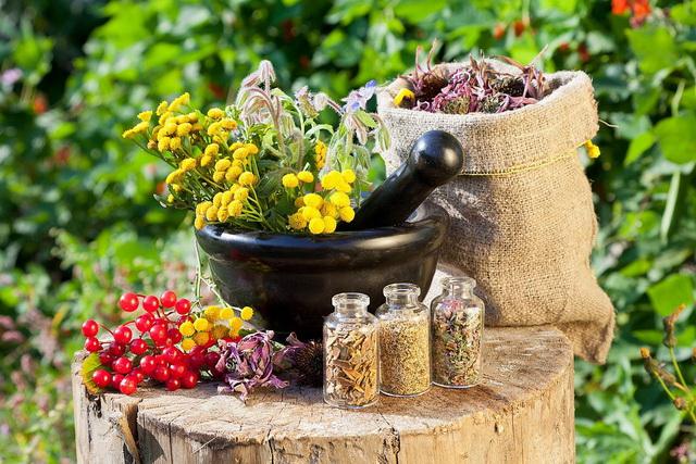 Народные средства от быстрого семяиспускания хороши тем, что дарованы самой природой, они обычно состоят только из натуральных или растительных компонентов