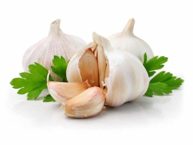 Острые растения давно известны лечебными свойствами