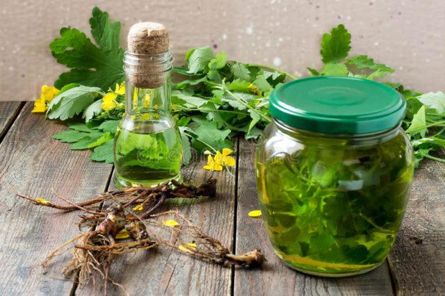 Все настойки готовятся с применением спирта либо водки, что и обуславливает эффективность травяной настойки
